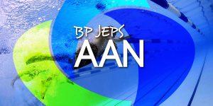Bannière AAN3 300x150 - Nos formations